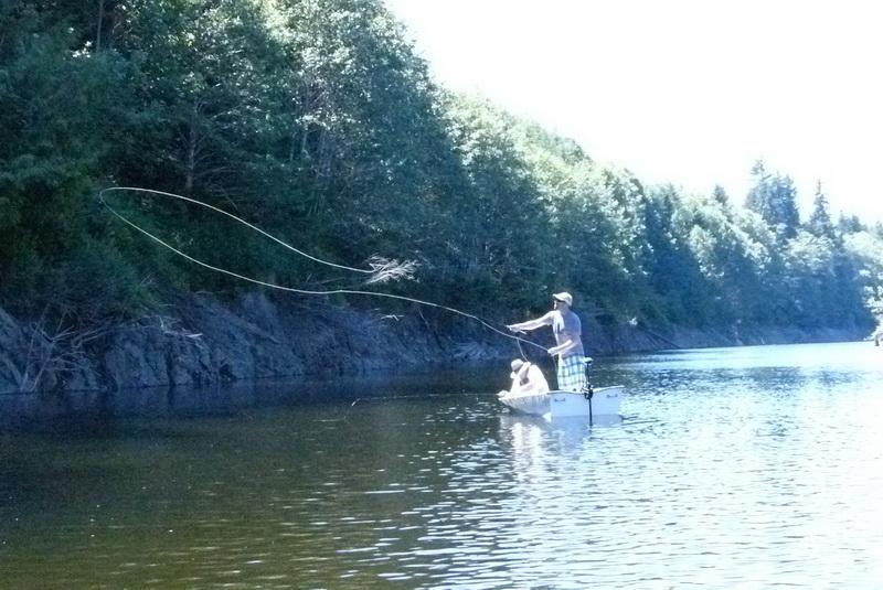 Fishing Sites Web 07