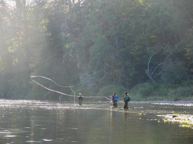 Fishing Sites Web 09