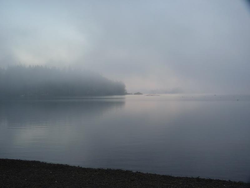 Fishing Sites Web 12
