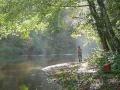 Fishing Sites Web 11