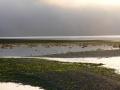Fishing Sites Web 17