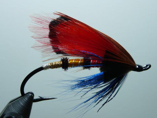 Iris Flies 06
