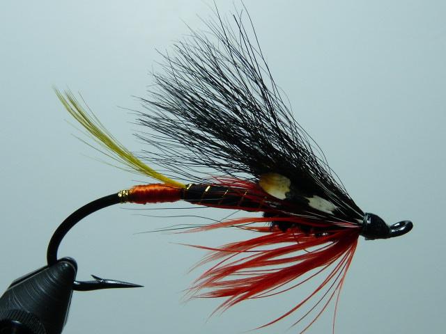 Iris Flies 07