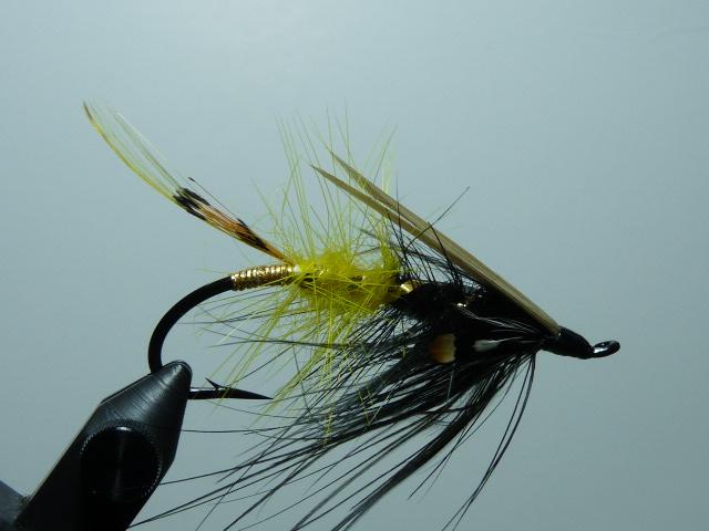 Iris Flies 10