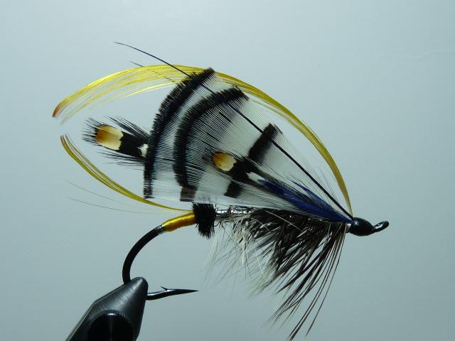 Iris Flies 12