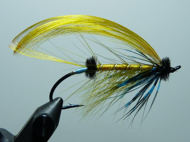 Iris Flies 14