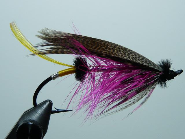 Iris Flies 17