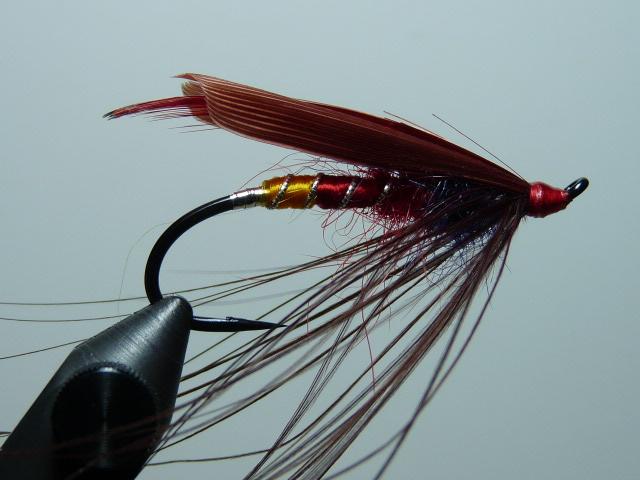 Iris Flies 37