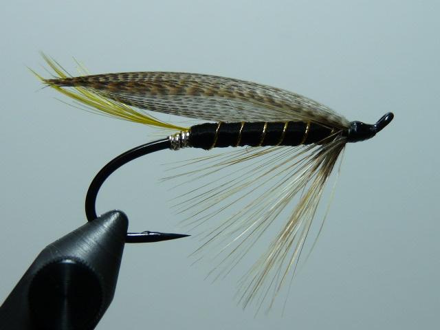 Iris Flies 38