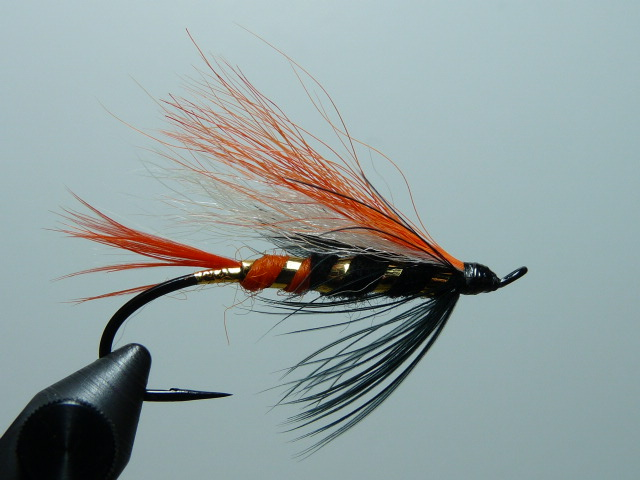 Iris Flies 41