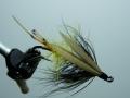 Iris Flies 11
