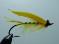 Iris Flies 16
