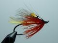 Iris Flies 21