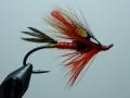 Iris Flies 23