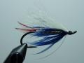 Iris Flies 25