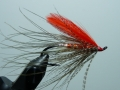 Iris Flies 28