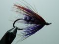 Iris Flies 30