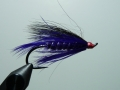 Iris Flies 31