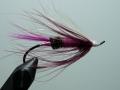 Iris Flies 33