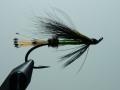 Iris Flies 39