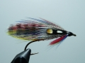 Iris Flies 18