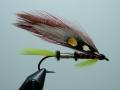 Iris Flies 19