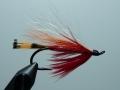 Iris Flies 20