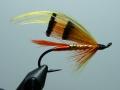 Iris Flies 24