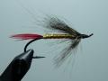 Iris Flies 26