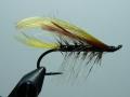 Iris Flies 29