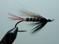 Iris Flies 34